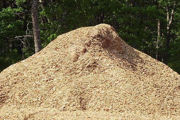 white pine wood chips for pickup and delivery on cape cod